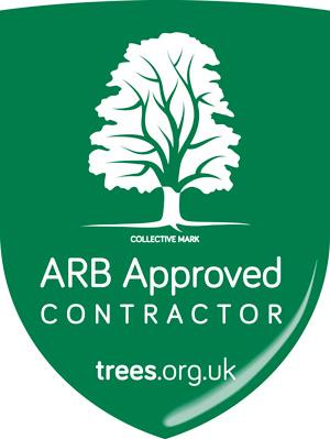 ARB Approved Tree Surgeon Wimborne